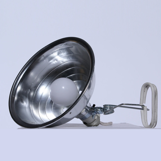 Picture of Lampe d'appoint -  Clip light